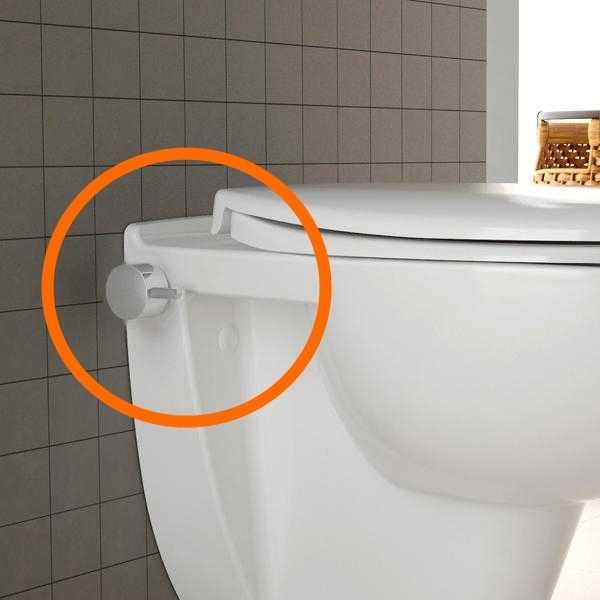 temtatsi wand wc und bidet in einem. Black Bedroom Furniture Sets. Home Design Ideas